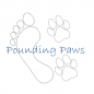 Pounding Paws - Cardiff dog walking, boarding and day care